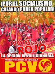 Por el socialismo