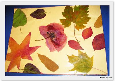 fall foliage place mat kids crafts