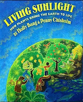 Living Sunlight photosynthesis book review Saffron Tree Molly Bang Penny Chisholm