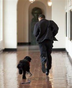 michael baron obama thesis
