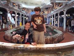 The Aquarium