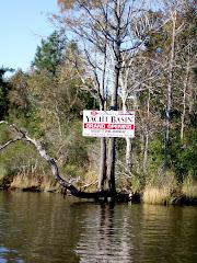 Alligator Pungo Canal
