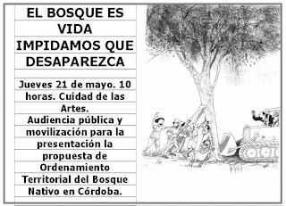 Que no se destruya el bosque