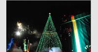 Arbol de Navidad en Córdoba