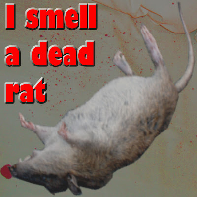 I smell a dead rat