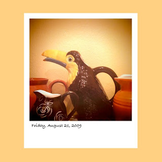 iPhone polaroid, toucan, pitcher collection