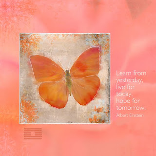butterfly, Albert Einstein, canvas wrapped print