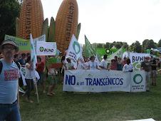 Planet Diversity Org Festival