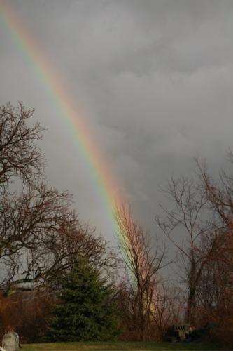 [rainbow1]