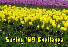 SPRING '09 READING CHALLENGE