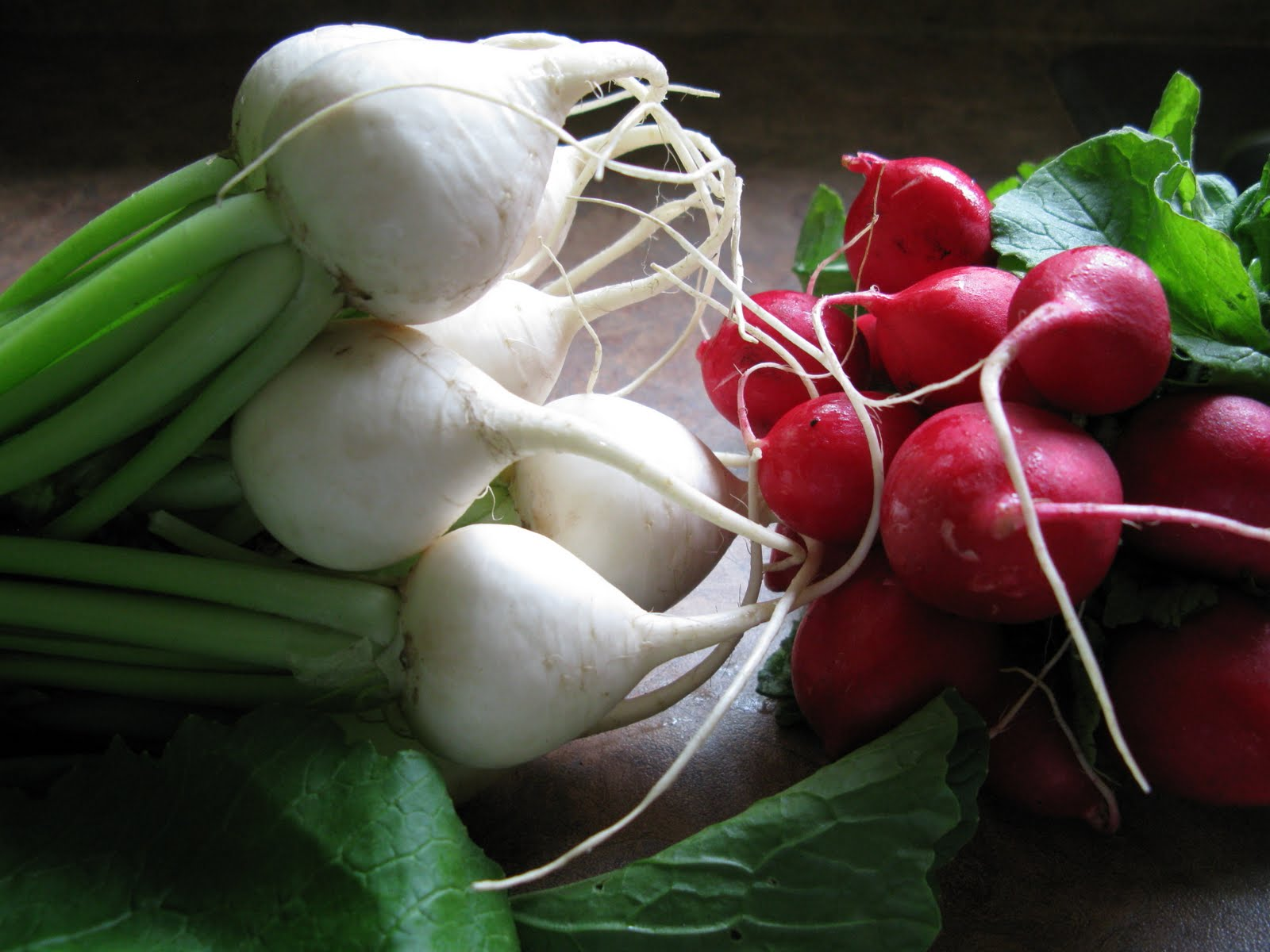 Au gr du march quand les navets se mangent crus et les radis cuits - Quand cueillir les radis ...
