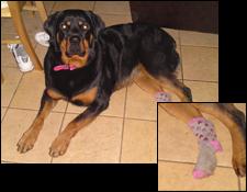 Pretty Pink Sock