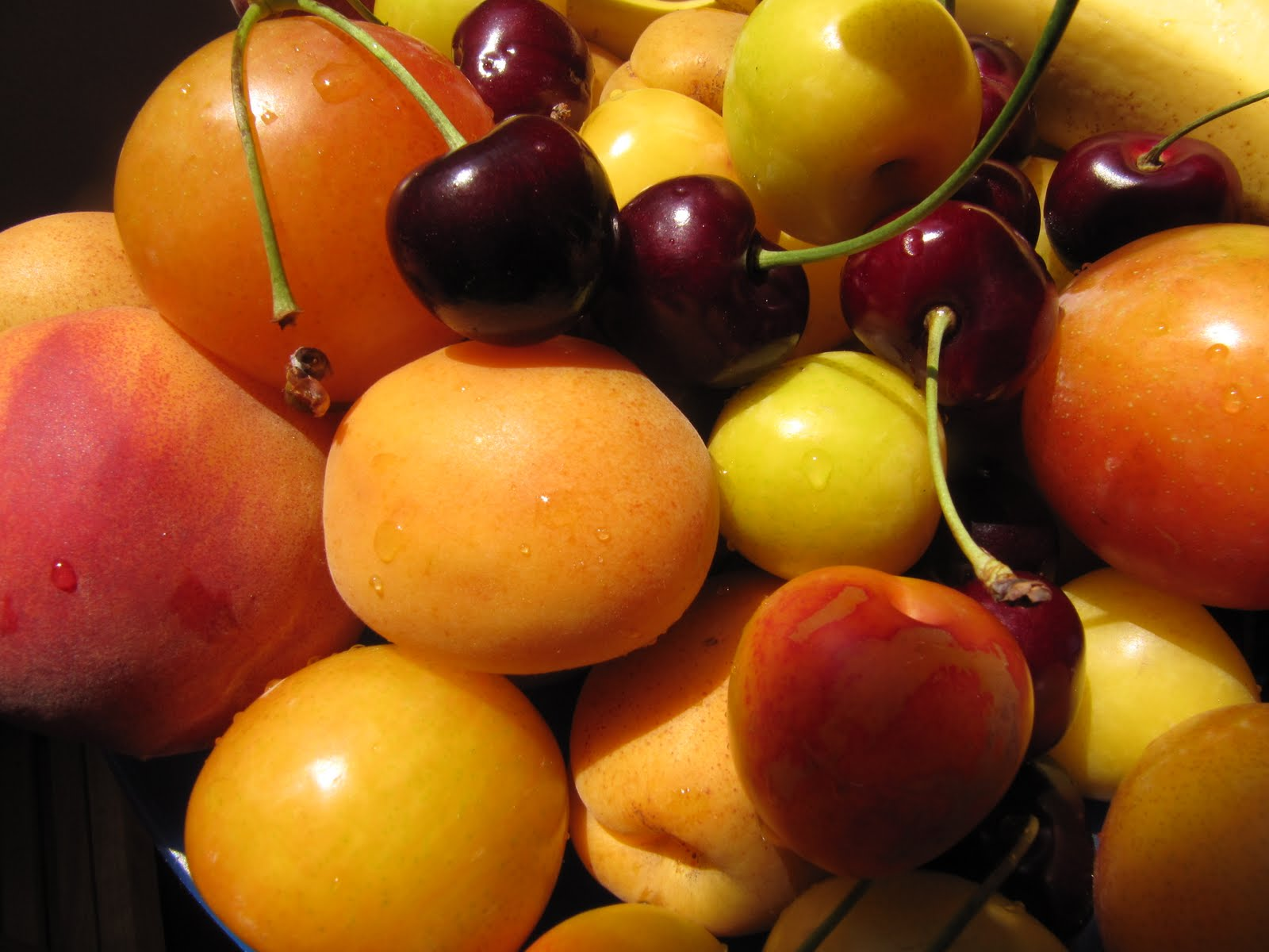 stone fruits are fruits fattening