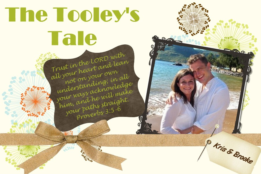 The Tooley's Tale