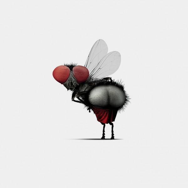 [Fly02.670px_o-600x600.jpg]