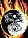 el yin yan