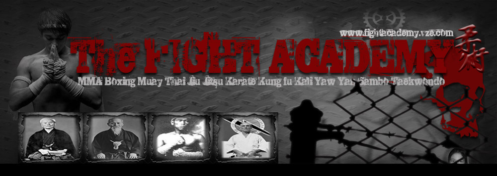 Fight Academy. Free LIVE online streaming UFC MMA TV, Pacquiao Boxing, K-1, BJJ.