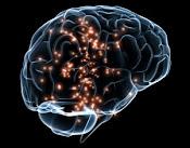 Bateria diagnostica al servicio de la deteccion de la conservacion de las capacidades cognitivas