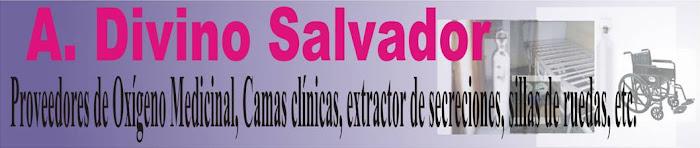 A. Divino Salvador