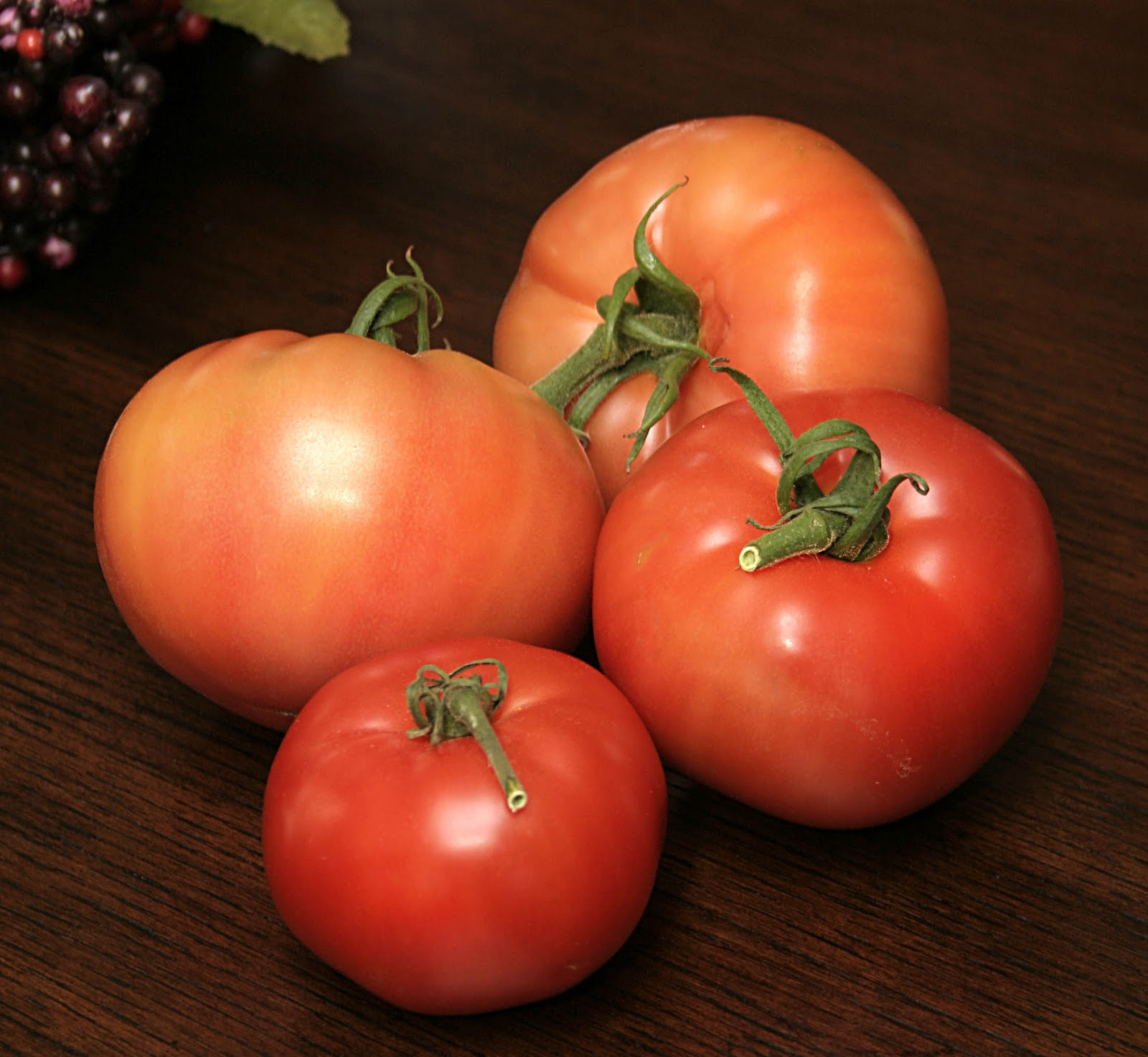 The Juicy Tomatoes Guide to Ripe Living after 50 Susan