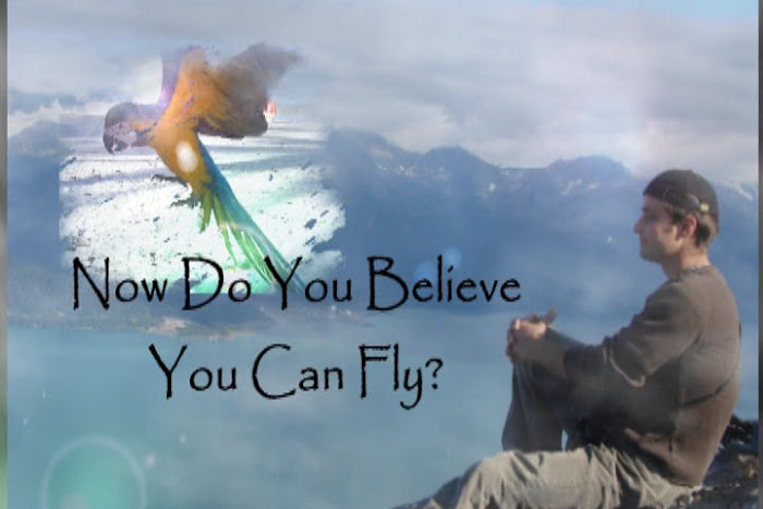 NOW DO YOU BELIEVE YOU CAN FLY