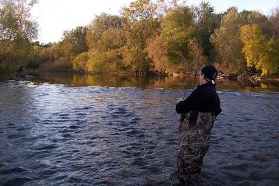 Great lakes angler milwaukee river fall salmon fishing for Milwaukee river fishing