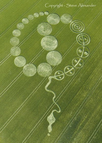 Indonesia Crop Circle. Tesla Crop Circle - There has