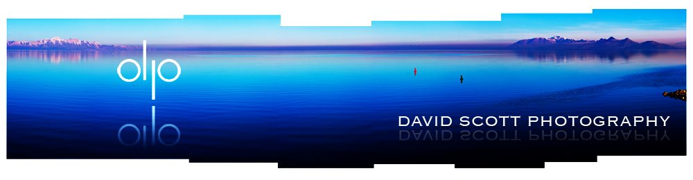 david scott photography