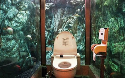 Funny Toilets With a Great View