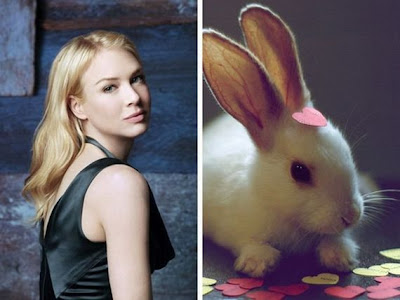 Funny - Similarity Between Celebrities And Animals