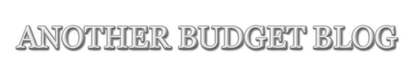 Another Budget Blog