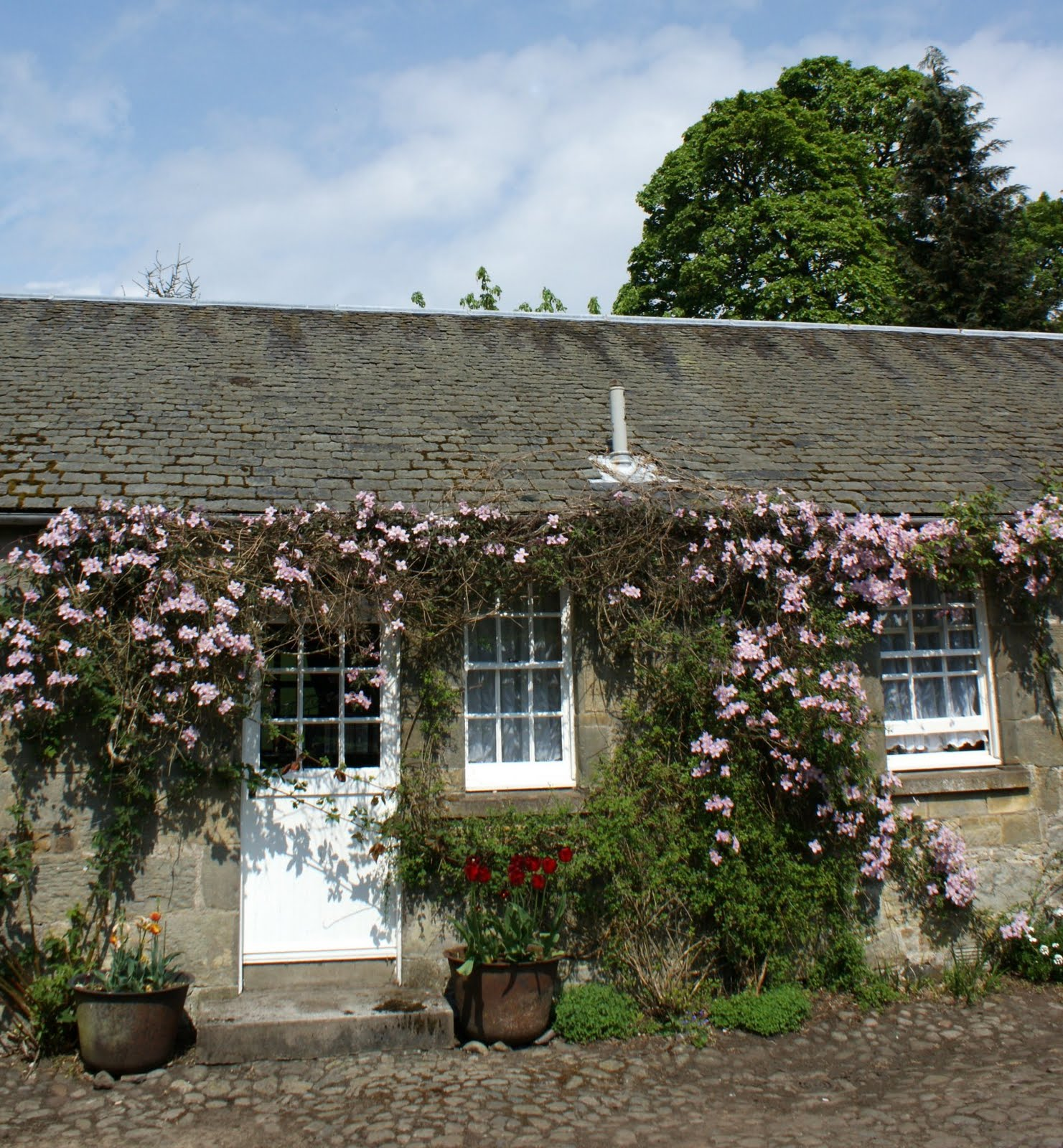 Old Scottish Cottage