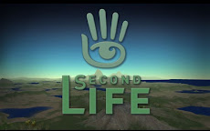 SECOND LIFE AIDE