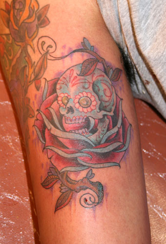 rose tattoos designs. rose tattoo designs. pink