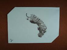Help! A Tiger, 2011