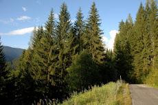 Austria, Eben im Pongau.