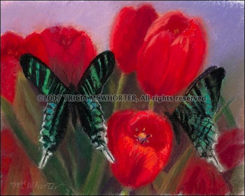 Butterflies and Red Tulips
