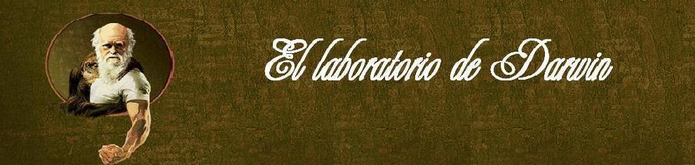 el laboratorio de darwin