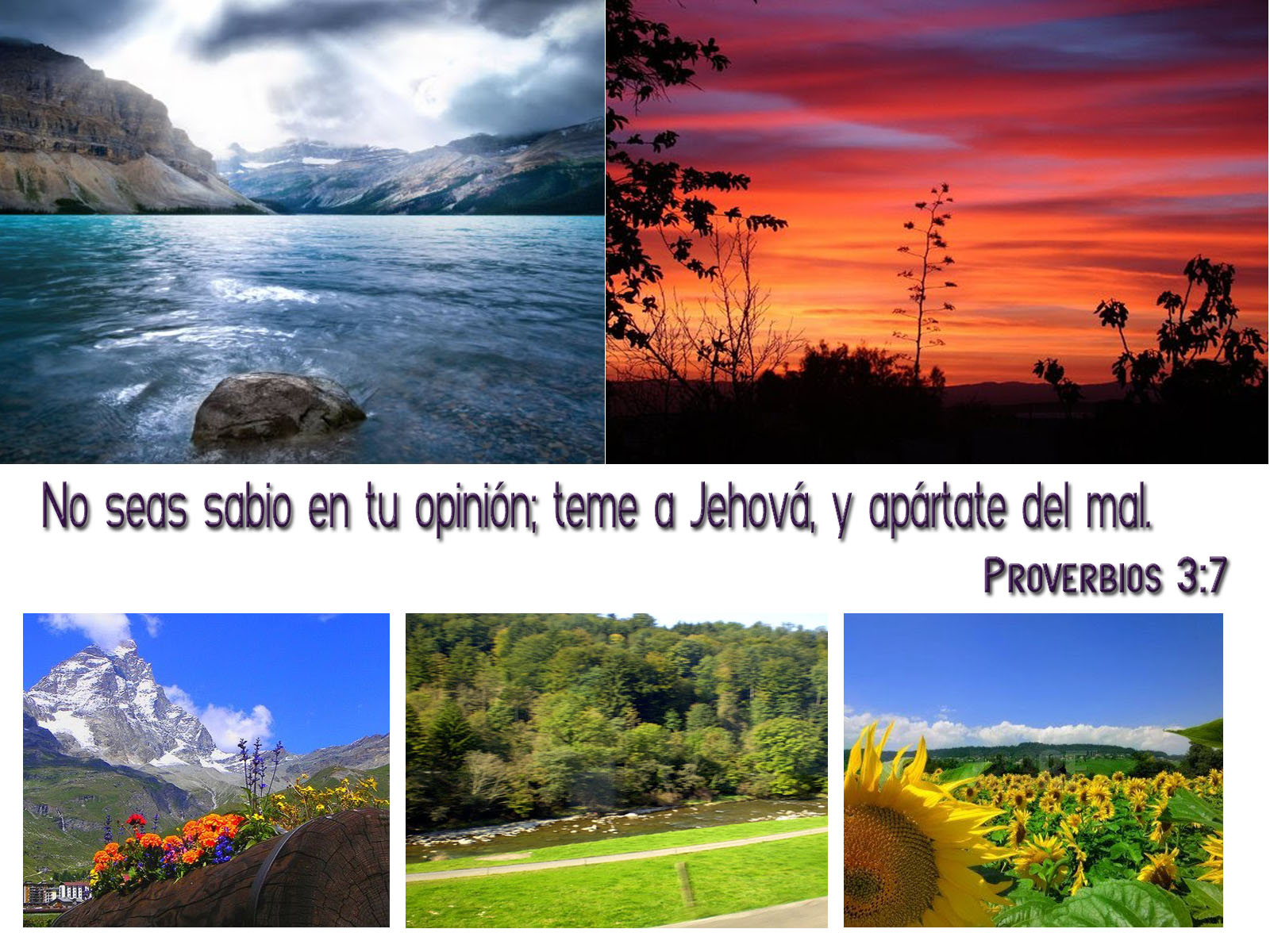 http://2.bp.blogspot.com/_4HGw-c3Vpm8/S-qwh0sOkoI/AAAAAAAAAAc/saU3KGKjugE/s1600/Proverbios+3-7.jpg