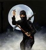 Ninja profile