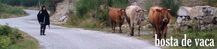 bosta de vaca