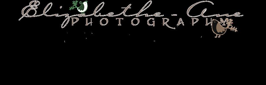 Elizabethe-Ane Photography
