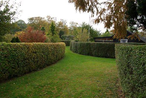 Surdaka peque os jardines celulares for Diseno de jardines en parcelas