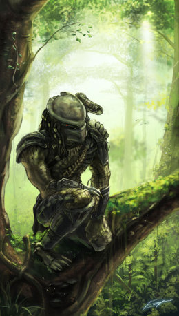 Imágenes de Depredador Predator3