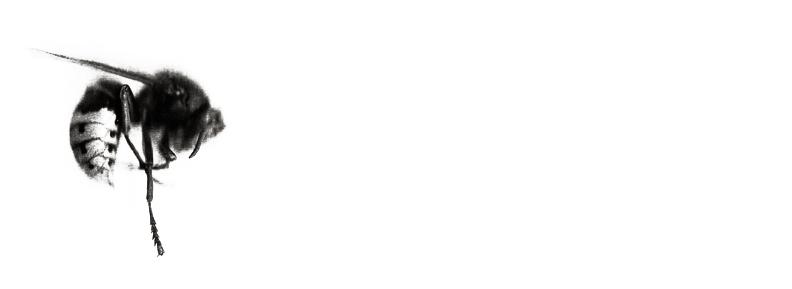 settanta cento 70_100 raffaello de pol