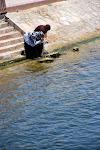 Fraicheur du Nil