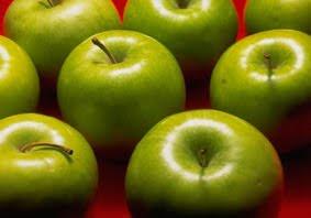 budidaya apel malang
