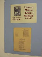 Radnóti kiállítás