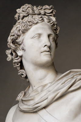 Apollo Belvedere, detail head