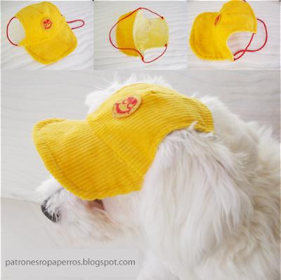 gorra perro